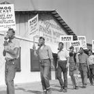 "Protesters complain about the stench from a Los Angeles varnish factory in 1949. Their slogan was ""this joint stinks!"""