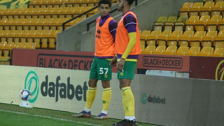 Tom Dickson-Peters and Andrew Omobamidele of Norwich