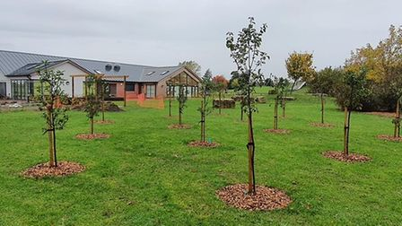 Huntingdon Community Orchard