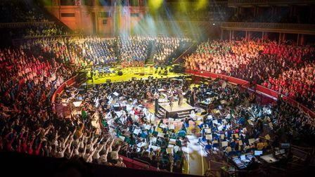 The charity is responsible for the annual schools' concert at the Royal Albert Hall
