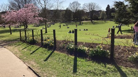 A sunny Clarence Park on the first day lockdown restrictions were relaxed.