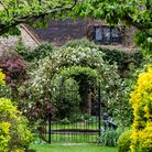 Flower-decked gateway in an old country garden