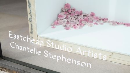 Chantelle Stephenson is one of the artists exhibiting work in the window of Eastcheap Studios, Letchworth.