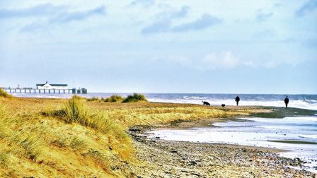 Dog walkers on Southwold beach Picture: CANDY KOURAKOS