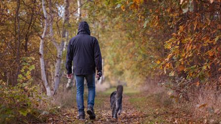 Take advantage of the beautiful walks on offer in the area with your four-legged friend this year.