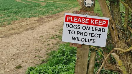 Signs outside of Saffron Walden ask dog walkers to keep dogs on a lead to protect wildlife