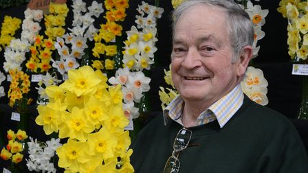 master daffodil grower Ron Scamp
