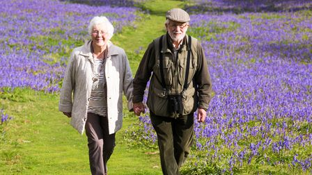 Senior couple walking through bluebells in the Yorkshire Dales