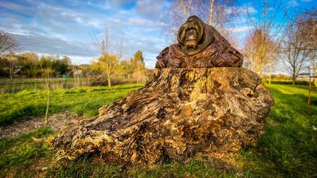 Nick Bibby's exquisitely crafted bronze piece Orangutan, Old Man of the Forest can be found at Sculpture by the Lakes