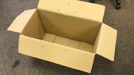 Cardboard box which the two cats were trapped inside in Stevenage