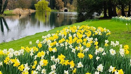 Tatiana Chapman took this photo in the south gardens at Burghley House.