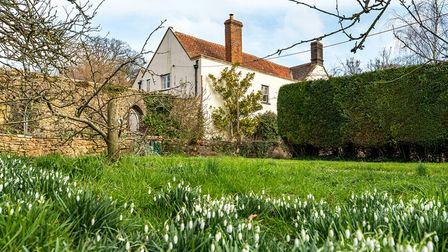 Lawned garden with snowdrops in foreground and the manor house in Christon in the background.