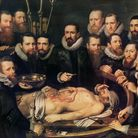 The Anatomy Lesson of Doctor Willem van der Meer in Delft