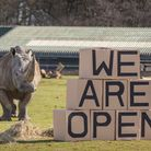 Whipsnade Zoo has re-opened after lockdown.