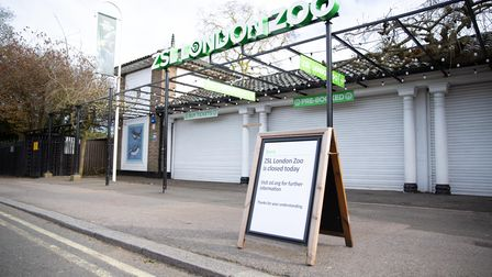 London Zoo's front gate during lockdown