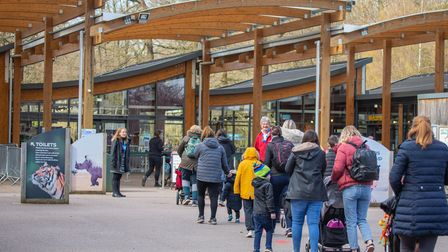 The re-opening of Whipsnade Zoo on April 12.