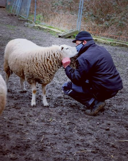 A volunteer enjoying the benefits of looking after animals at Angelica's Rainbow Sanctuary on Hellesdon Road, Norwich.