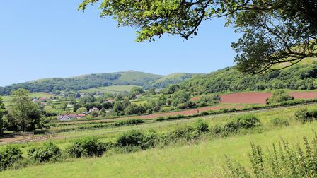 Wavering Down and Crook Peak from Cross village