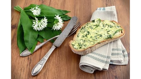 Wild garlic can be used to make wild garlic butter to spread on bread and toast