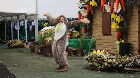 An enthusiastic person dressed as an Easter Bunny surrounded by oversized carrots