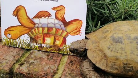 Albert the tortoise with the book he inspired, Albert Upside Down