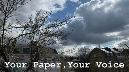 Your Paper, Your Voice