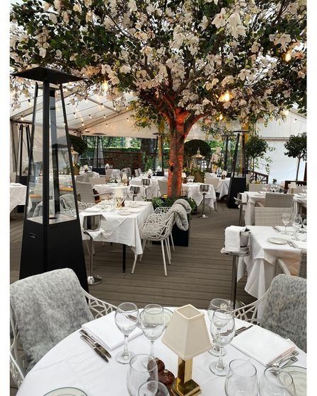 San Carlo, Hale, outdoor, covered terrace, with large blossom tree, surrounded by dinner tables