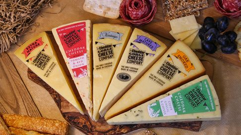 An array of different cheeses lie side by side. Around them are other foods such as salami, olives, and crackers.