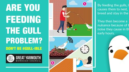 Great Yarmouth Borough Council's new seagull campaign poster