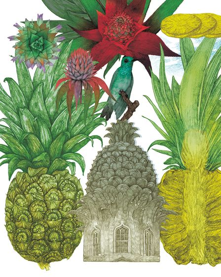 Pineapples were so expensive in the 18th Century they were taken to parties as accessories