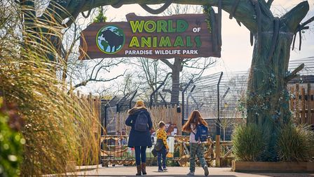 Hertfordshire zoo Paradise Wildlife Park has reopened to the public