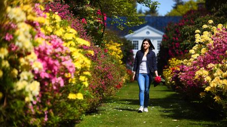 The gardens at Stody Lodge are in full bloom. Pictured is Raphaela Sailer. Picture: Ian Burt
