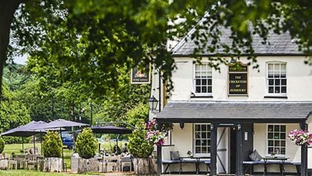 The Cricketers of Redbourn pub overlooking Redbourn Common