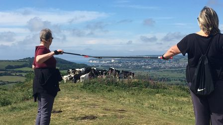 Axminster and Lyme Cancer Support Nordic walking group