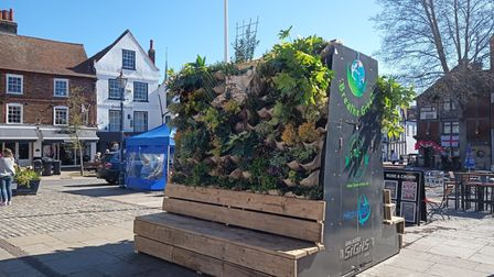 Rob Chivers' Urban Green Artists project, Breathe Green, creates the same volume of clean air as three semi-mature trees.