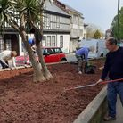 The gardening group from Paignton's Royal British Legion branch hard at work clearing one of the raised beds.
