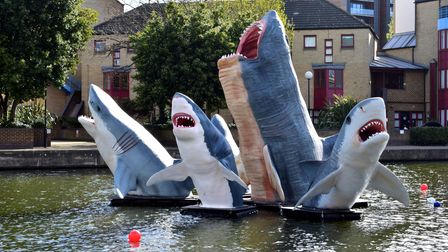 Hoxton sharks now installed at City Road Basin
