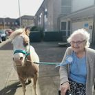 Frances Eldred and Trixy the pony