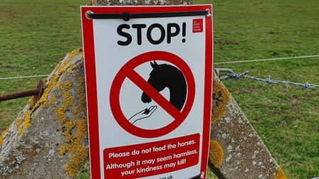 A sign from the British Horse Society instructing people not to feed horses.