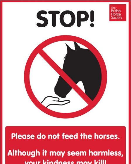 A sign instructing people not feed horses.