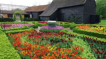 Essex NGS open gardens 2021: Ulting Wick is famous for its tulips