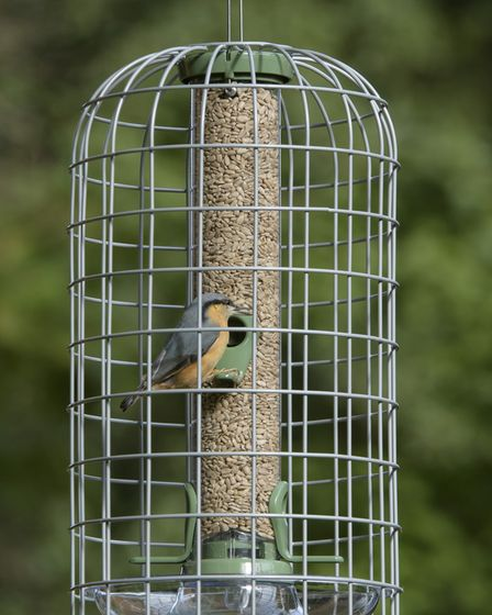 The medium Ultimate Guardian and seed feeder.