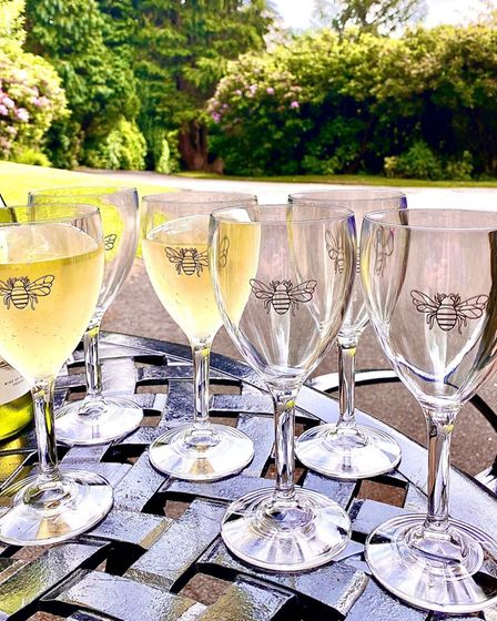 Set of 6 Bee 11oz Wine Glasses, At Home in the Country.