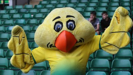 Captain Canary before the Pre-season friendly match at Carrow Road, NorwichPicture by Paul Chester