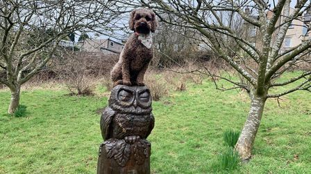 A brown cockapoo sat on top a wooden owl statue