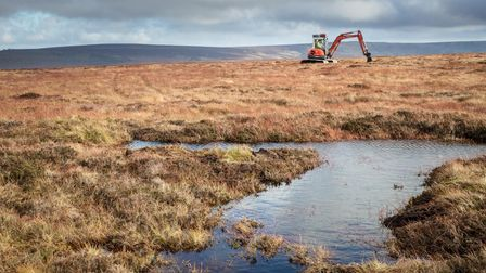 A digger creating peat dams to rewet the moor and improve habitat