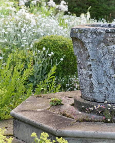 The central piece of the white garden, a venetian well head. With Erigeron karvinskianus.