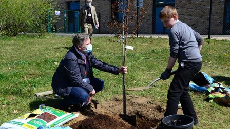 Pupils planting the trees at Chantry Academy in Ipswich.