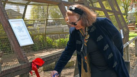 Princess Katrina performing the ribbon cutting at the Raptor Foundation.