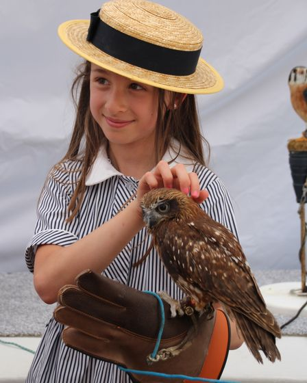 The KCL garden party will include a display of birds of prey